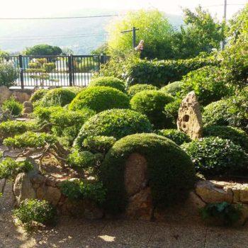 Jardin et Espaces Verts à Casa Favalella