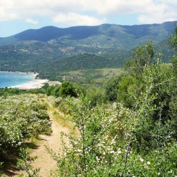 Randonnée à travers le maquis Corse, direction la plage - Casa Favalella